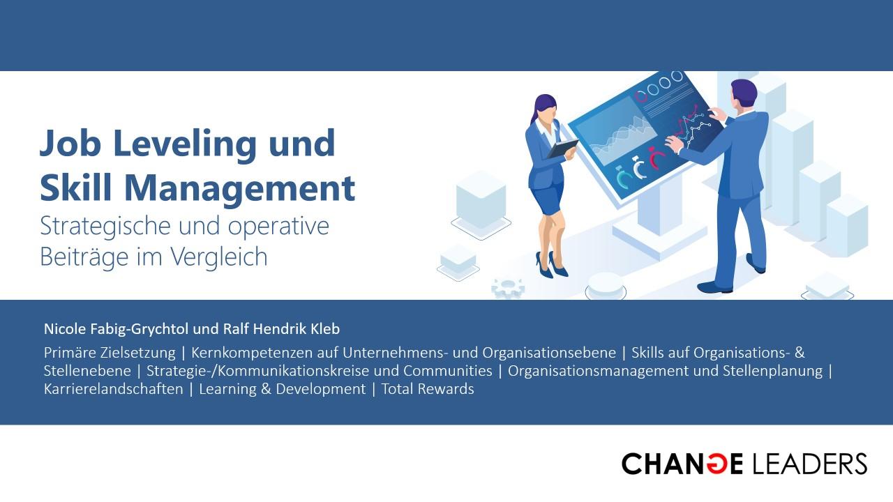 Strategische und operative Nutzenaspekte von Job Leveling / Stellenbewertung und Kompetenz- & Skill-Management im Vergleich
