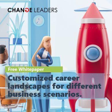 Rethinking Career Models - Part 2 mini