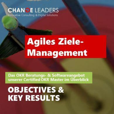 Agiles Ziele-Management 390